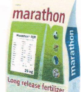 Marathon tcr